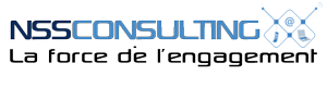 NSS Consulting Logo